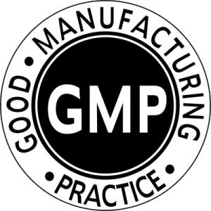 Norme di Buona Fabbricazione (NBF-GMP)